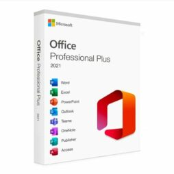office 2021 professional