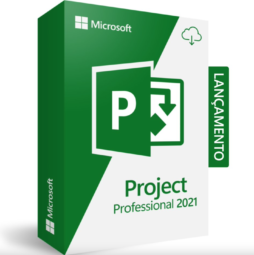 project professional 2021